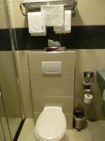 BEST WESTERN Blue Square Hotel: Toilet