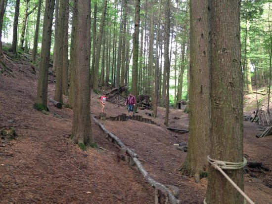 Hidden Valley Touring & Camping Park: One of the woodland walks
