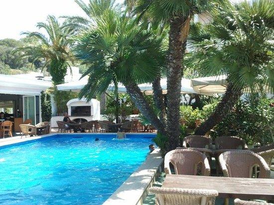 Hotel Colella Terme: piscina