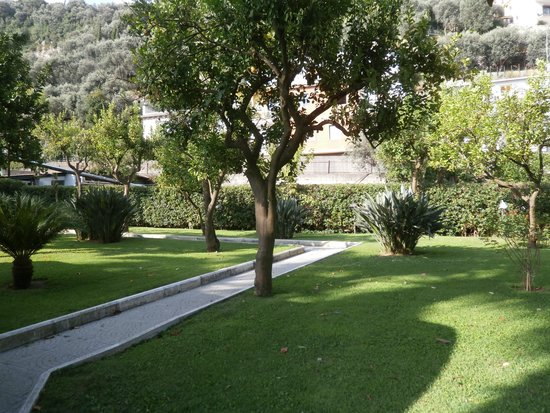 Grand Hotel Parco Del Sole: lemon trees in the garden