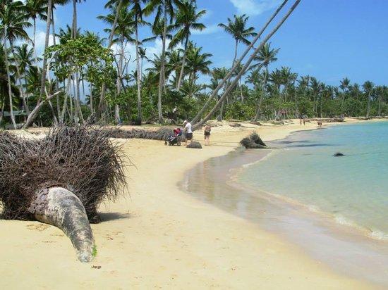 Playa El Portillo : Praia do Hotel Gran Bahia Principe El Portillo