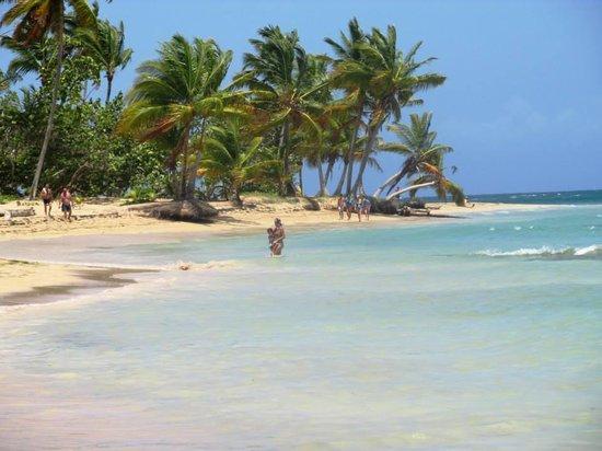 Playa El Portillo : Praia de El Portillo