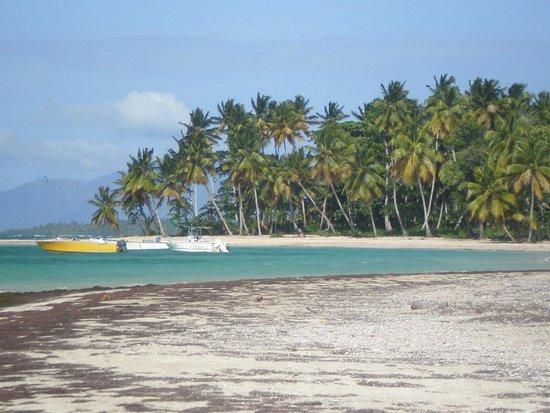 Playa El Portillo : Praia virgem em El Portillo