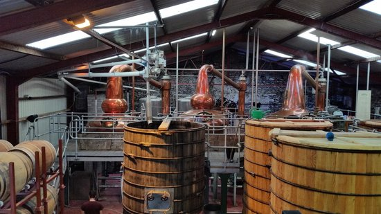 Dingle Whiskey Distillery: The interior of the distillery showing the fermentation vats and pot stills.