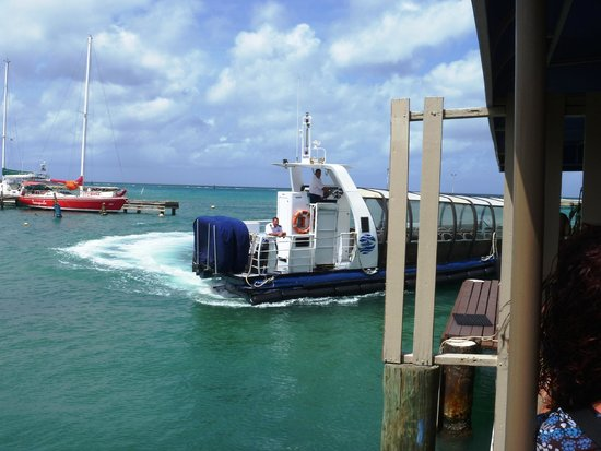 De Palm Tours: Atlantis Submarines Expedition: Atlantis Sub Transfer Boat arriving for yje 11 am trip