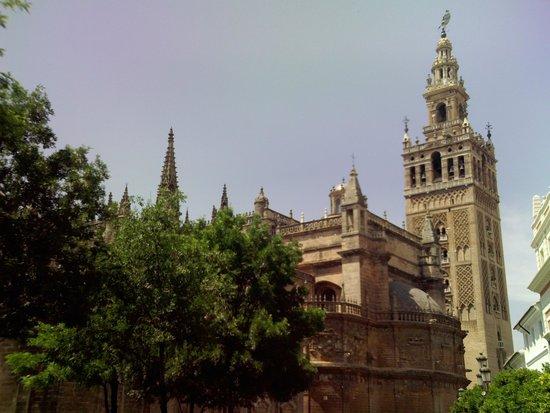 Catedral de Sevilla: E ela está ali... inserida num contexto de modernidade, e surpreendentemente tudo está em harmon