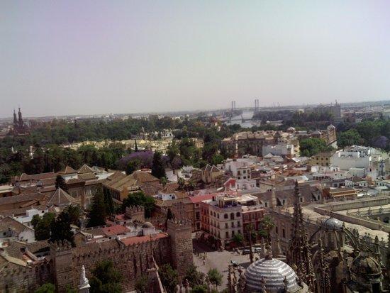 Catedral de Sevilla: Subindo na torre... eis aí a cidade se revelando... a cada ângulo uma visão diferente!