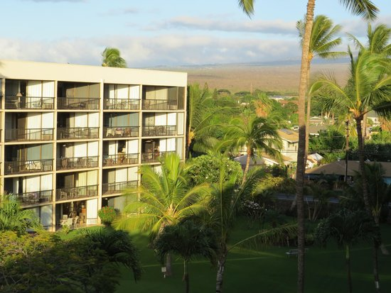 Maui Sunset Condos: facing A building and S. Kihei road