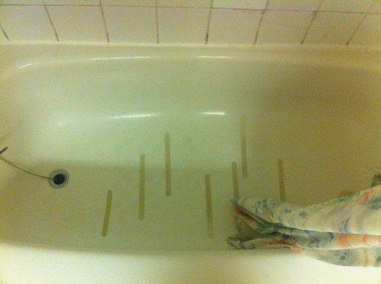 Niagara Lodge & Suites : Bathroom