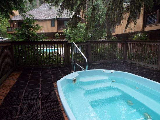 Alta Crystal Resort at Mount Rainier : hot tub