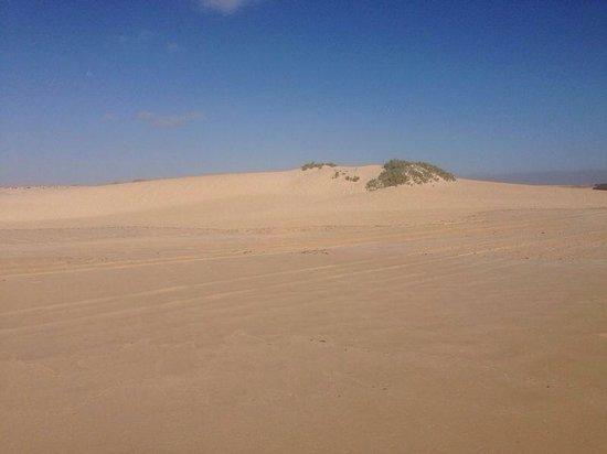 Dunas de Corralejo: Dune di corralejo