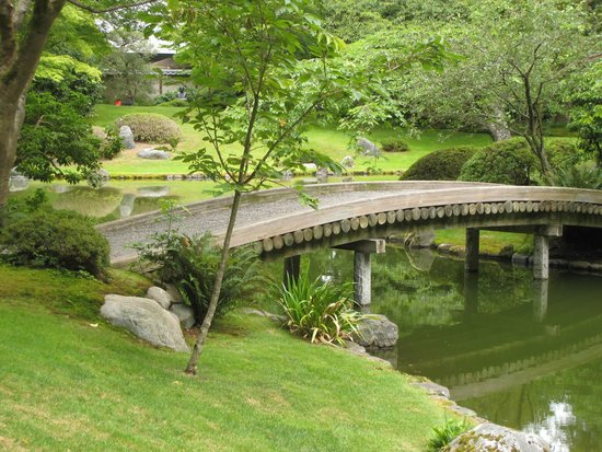 Museo de Antropología: The japanese garden-close by