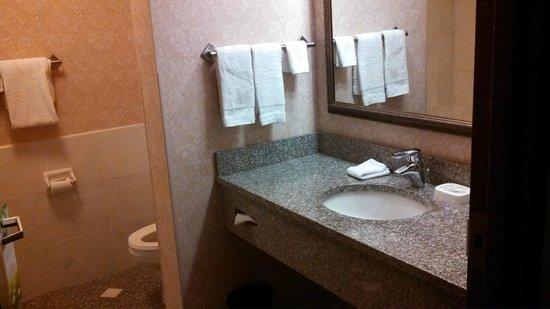 Drury Inn & Suites Indianapolis Northeast: Nice, Clean, Big