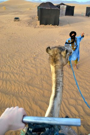 Top Desert: Riding the camel I named Camela with our tour guide in front