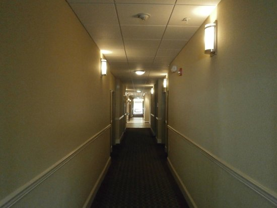 Holiday Inn Express Hotel & Suites Quincy I-10: First floor hallway