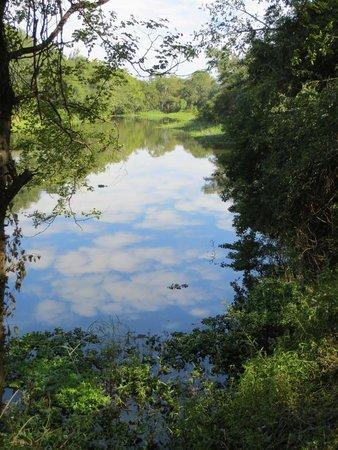 Maramba River Lodge: Maramba River view from Restaurant