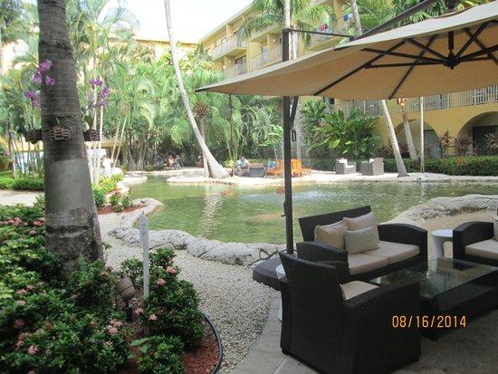 Grand Cayman Marriott Beach Resort: Turtle Pond