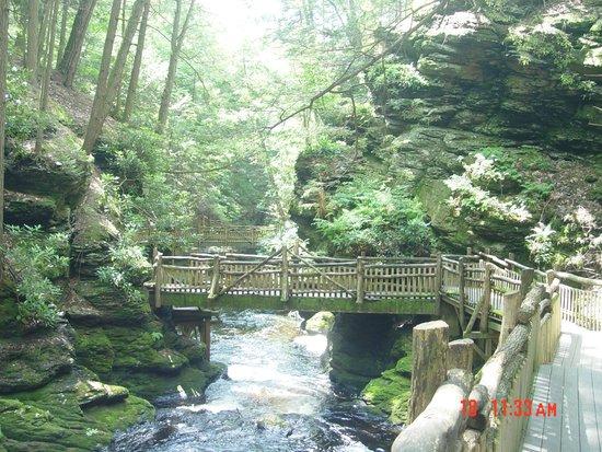 Bushkill Falls : trail bridge