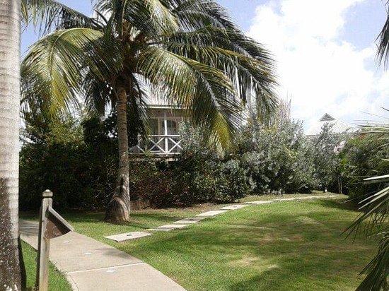 Cocobay Resort : giardini