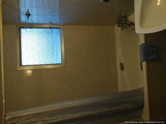 Hotel Borja : Shower (Sideways)