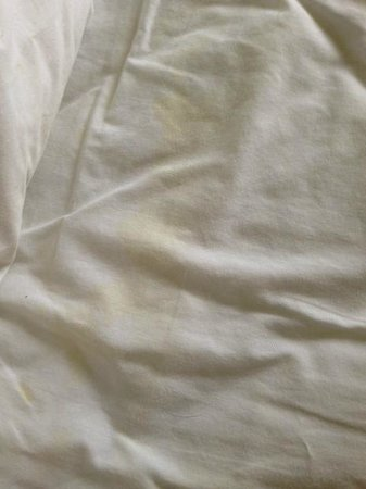 Clarion Hotel : Stained sheets on the bed