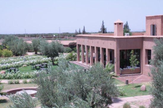 Ecolodge Quaryati : The grounds of Quaryati