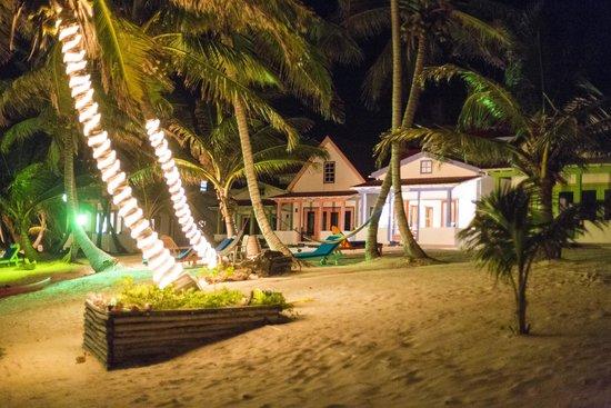 Tranquility Bay Resort : View At Night