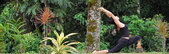 Yoga Killarney: getlstd_property_photo