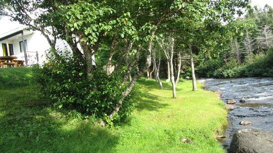 Bottom Brook Cottages: Cottage 5 and running brook