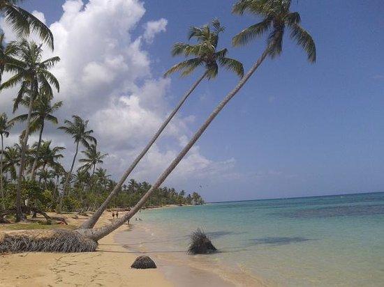 Grand Bahia Principe El Portillo: Praia