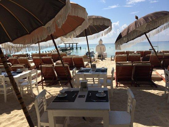El Taj Oceanfront & Beachside Condos Hotel: Nice beach