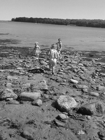 Ledges By the Bay: Kids finding shells