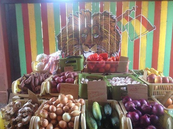 Produce table at Paia Farmers Market
