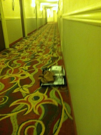 DoubleTree by Hilton - Washington DC - Crystal City: Tray of food 12th floor take 2...