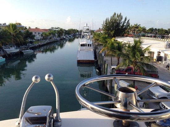 Cara Mia Fishing Charters: The view from the birds nest