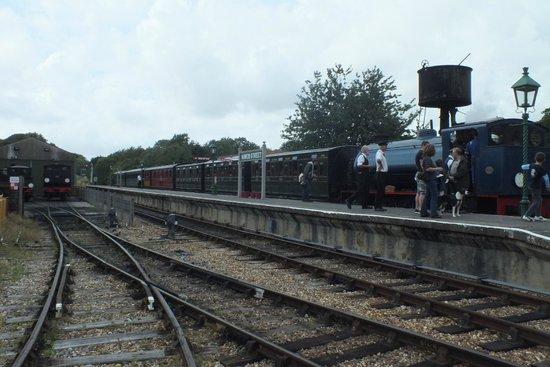 Isle of Wight Steam Railway: Train pulling in