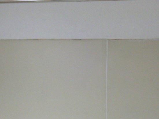 Red Roof Inn San Dimas - Fairplex : Edge of shower with dirt