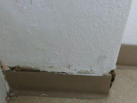 Red Roof Inn San Dimas - Fairplex: Base board and wall