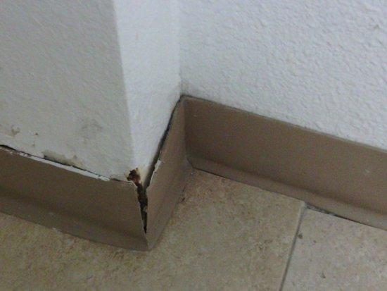 Red Roof Inn San Dimas - Fairplex: Dirt and crumbling. Bad patch job. Base board