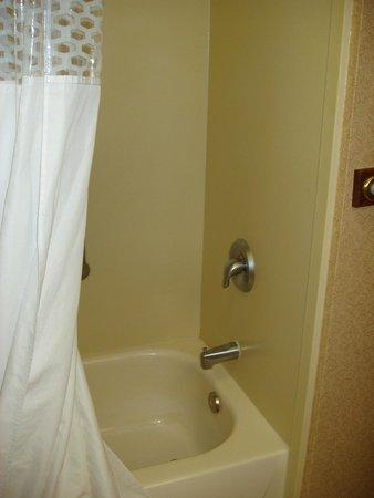 Hampton Inn Salina : Shower