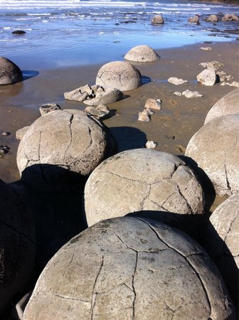 Moeraki Boulders: Nice place for a pitstop