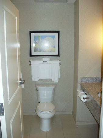 Holiday Inn Express and Suites Colorado Springs First and Main : Bathroom