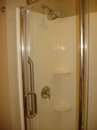 Holiday Inn Express and Suites Colorado Springs First and Main : Shower