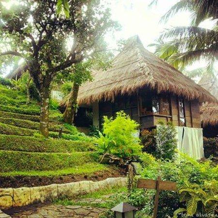 Nurture Wellness Village: Ifugao Hut Room (Banaue Room)