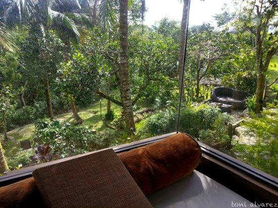 Nurture Wellness Village: View from the Ifugao Hut Room