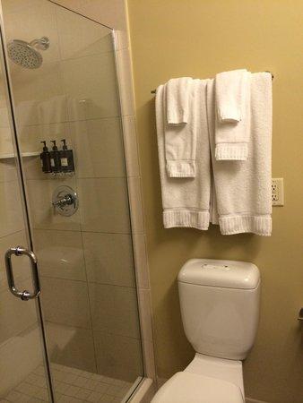 Hotel Abri: Ch 316. Produits de bain ds la douche. Seche cheveux.
