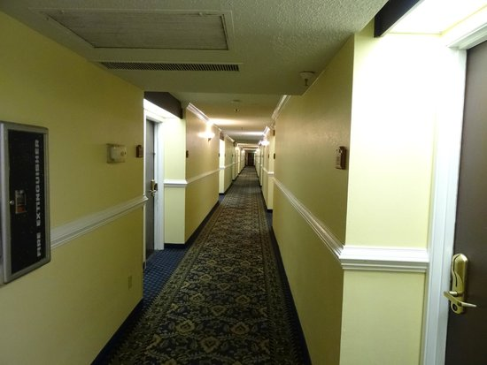 Travelodge Fort Myers Airport: Corredores