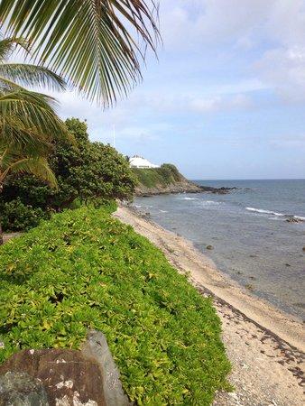 Tamarind Reef Resort, Spa & Marina: So gorgeous