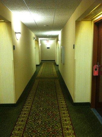 Drury Inn & Suites Columbus Grove City: Hallway on the 2nd floor