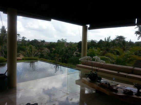 Komaneka at Rasa Sayang: The spa view
